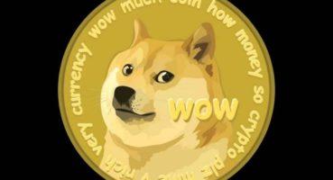 Doge Coin Nedir ? Nasıl Satın Alınır ?
